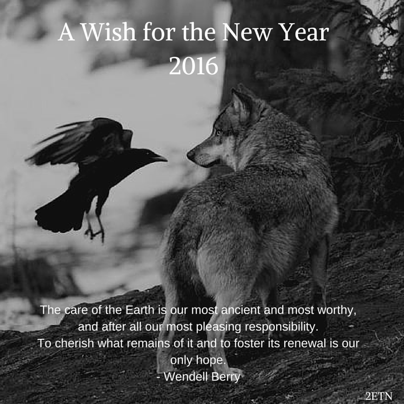 A Wish for the New Year